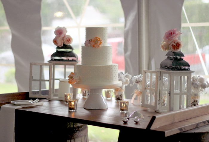 The Couture Cakery - Wedding Cake, Milestones on the River